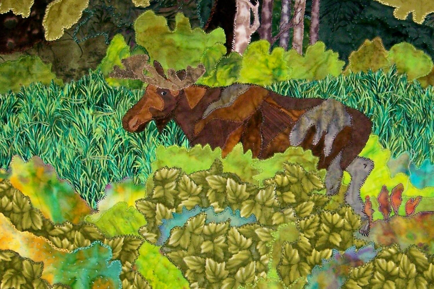 Algonquin Bull Moose